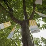 Wunschbaum der Wohnungslosen.. Foto: hmf, Petra Welzel